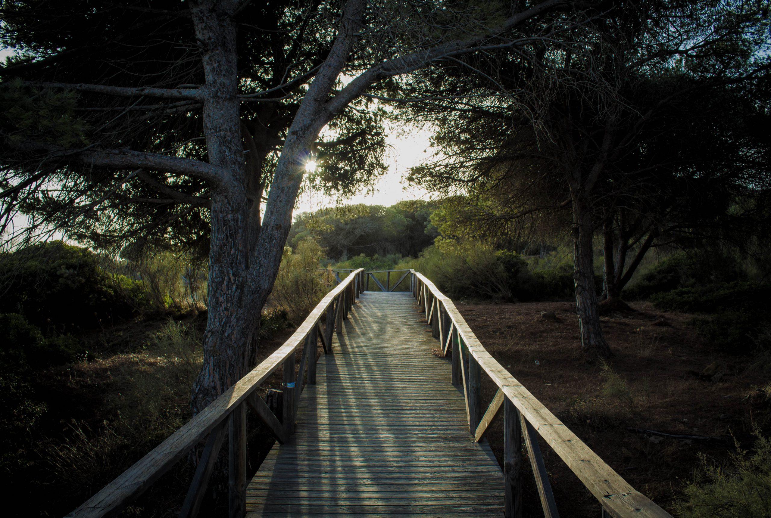 Rincones del Parque Natural del Estrecho